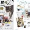「自分だけの猫モノを手に入れる」にオリジナルジグソーパズルが掲載されました