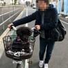 母と犬と調布でお散歩してきました