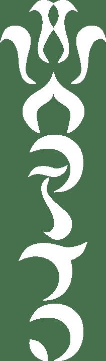 הלוגו של שחרזדה