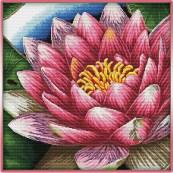 schema punto croce fior di loto rosa