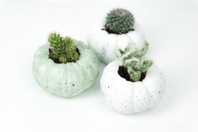 halloween deko basteln k rbis sukkulenten schereleimpapier diy blog f r wohnen geschenke. Black Bedroom Furniture Sets. Home Design Ideas