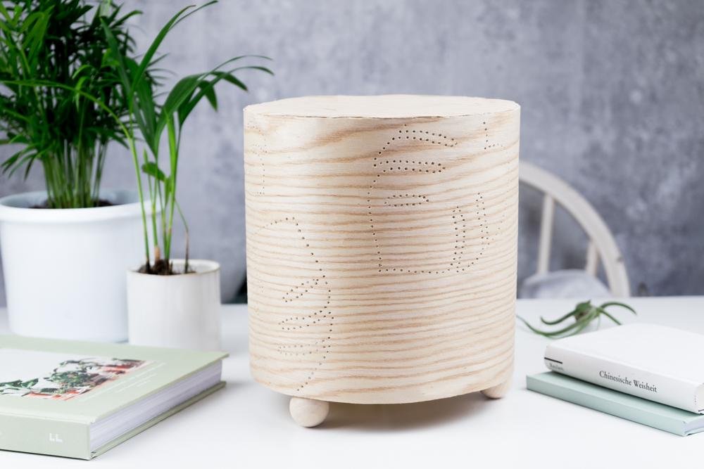 Holz Licht Pflanzenliebe Diy Furnier Lampe Selber Bauen