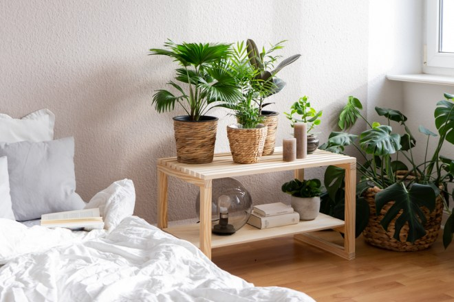 DIY Deko Idee: Urban Jungle Feeling im Schlafzimmer