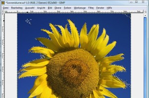 GIMP: Zauberstab-Werkzeug, Markierung erstellen