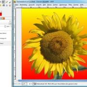 GIMP: Farbverlauf im Beispiel-Bild