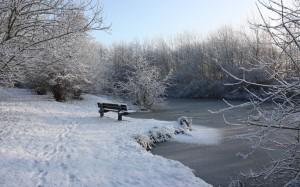 Ufer eines zugefrorenen Sees mit Schnee und Fußabdrücken, im Vorder- und Hintergrund schneebesetzte Zweige und Äste im seitlichen Licht der gelblich flach scheinenden Sonne