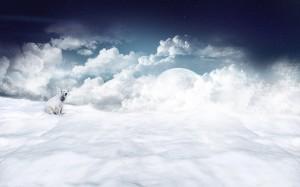 Sitzender Eisbär im Schnee, oben Sterne, Mond und Wolken