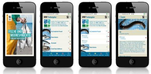 Fischratgeber App