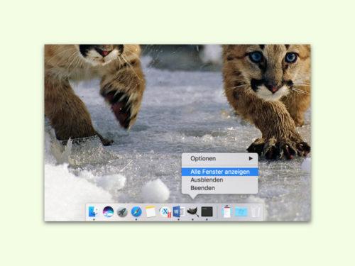 mac-alle-fenster-anzeigen