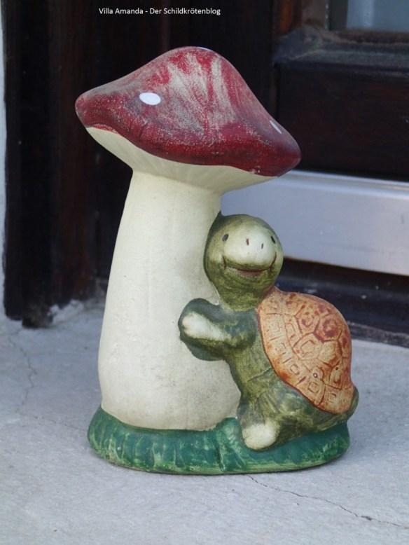 Schildkröten Figur mit Pilz