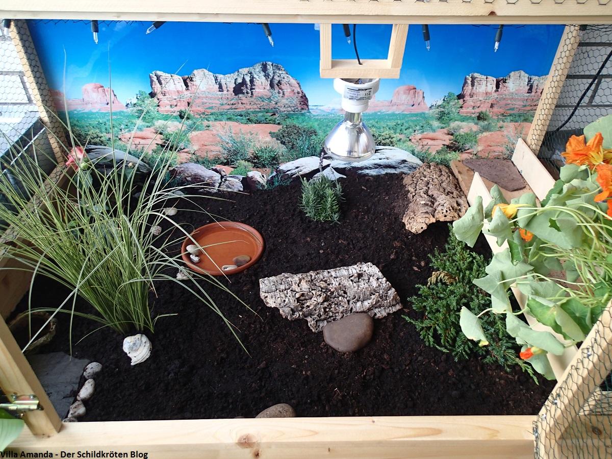 Bau des neuen Schildkröten Balkongeheges Teil 3: Einrichtung