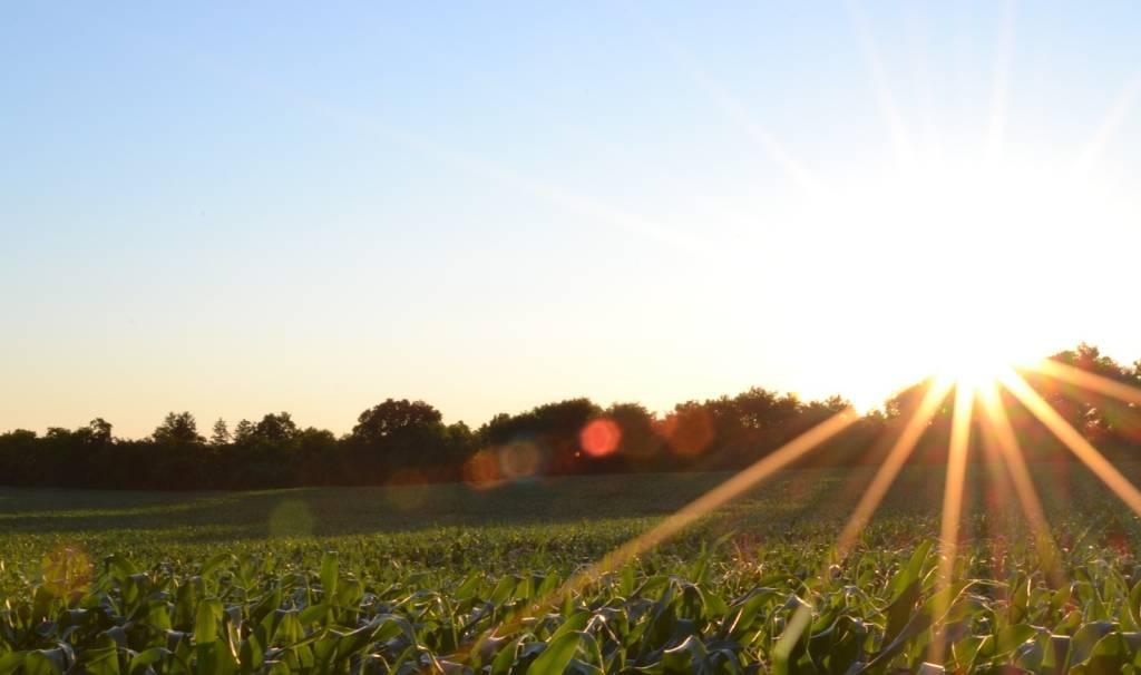 Ungewöhnlich viel Sonne zum Saisonstart