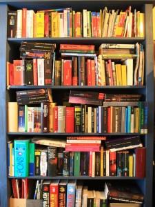 Eine Auswahl meiner Bücher