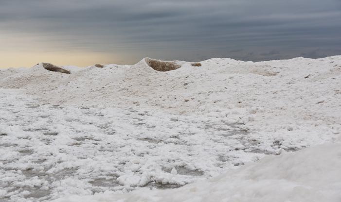 ice canos at schlitz audubon