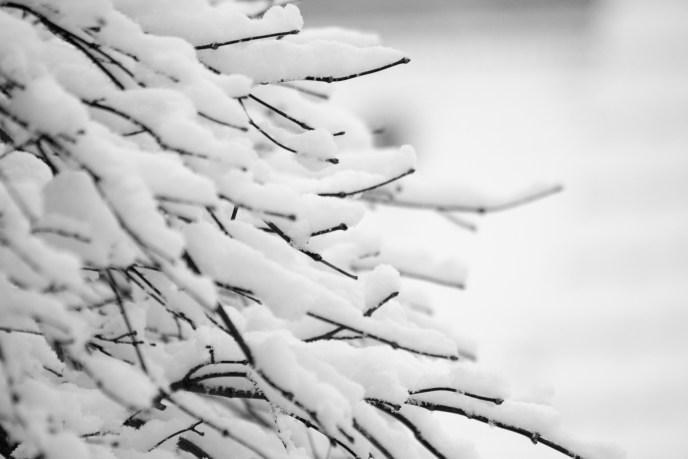 Schnee_II-2