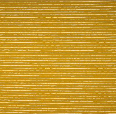 Jerseystripes senfgelb