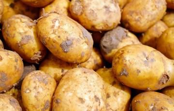 Kartoffelcremesuppe aus dem Schnellkochtopf