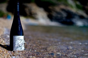 Forge Cellars Dry Riesling Classique 2015