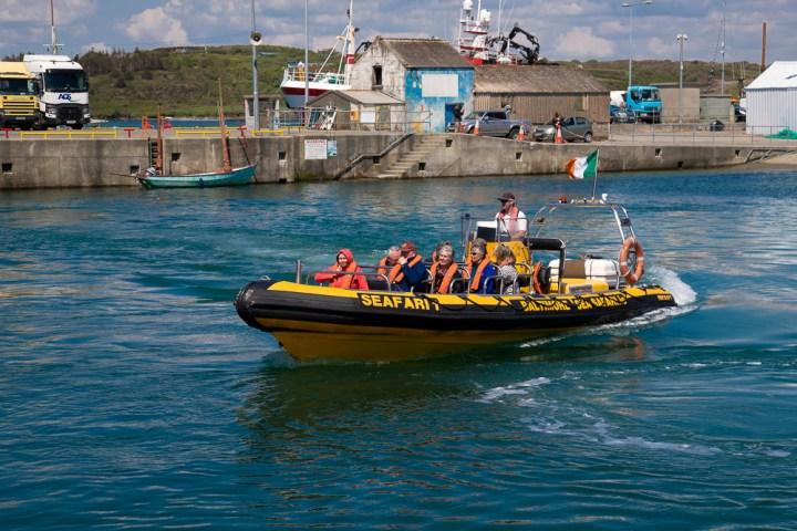 Die Seesafari kommt in den Hafen