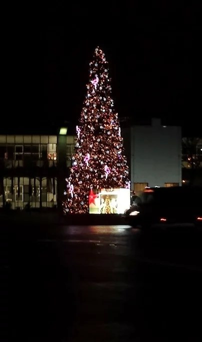 FireShot Capture 90 - Weihnachtsbaum.PNG (416×691)_ - https___www.schoener-leben-shop.de