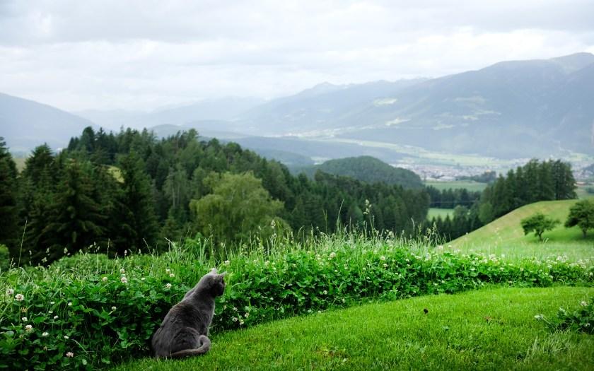 Das Pustertal bei Bruneck