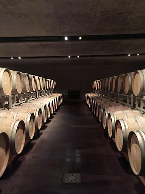 Weinkellerei Manincor Südtirol (Foto Charis Stank)