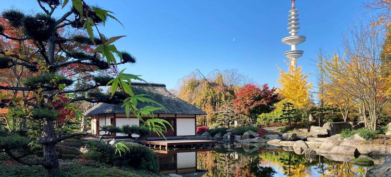 Japanisches Teehaus in Planten un Bomen