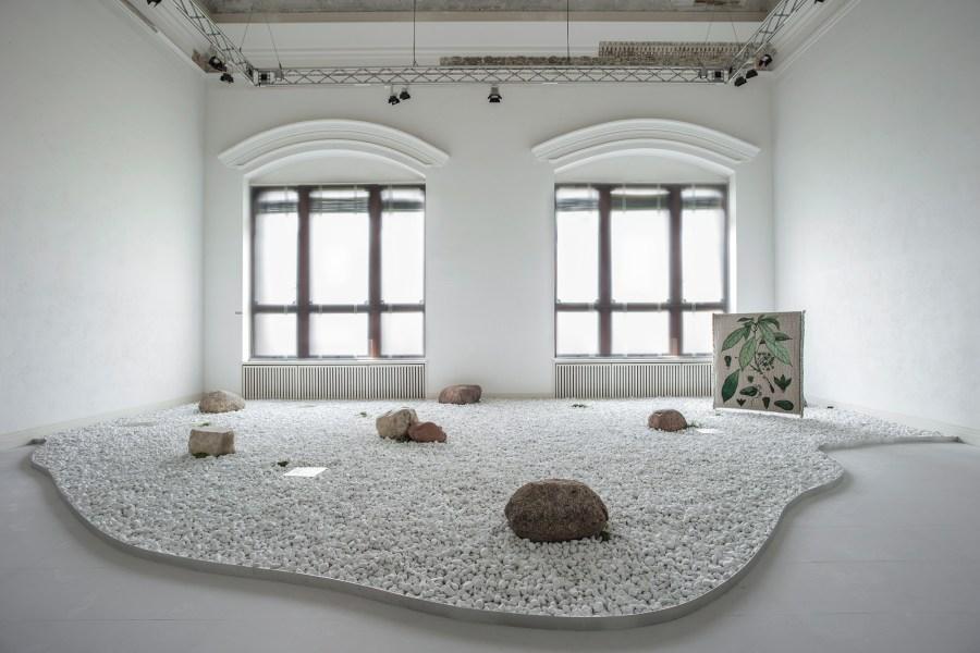 Taste of a Stone 2010 - 2020 Installationsansicht, Gropius Bau, Berlin Foto: Luca Girardini Courtesy of the artist © Otobong Nkanga