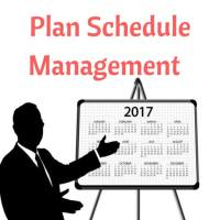 Plan Schedule Management Process