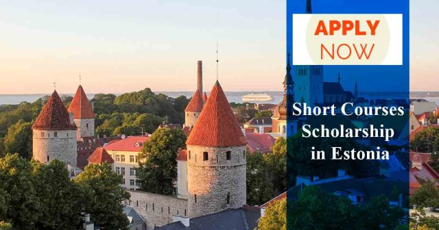 Image result for Estonian Government Scholarship For Short Courses.