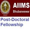 AIIMS Bhubaneswar Post-Doctoral Fellowship