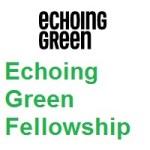 Echoing Green Fellowship