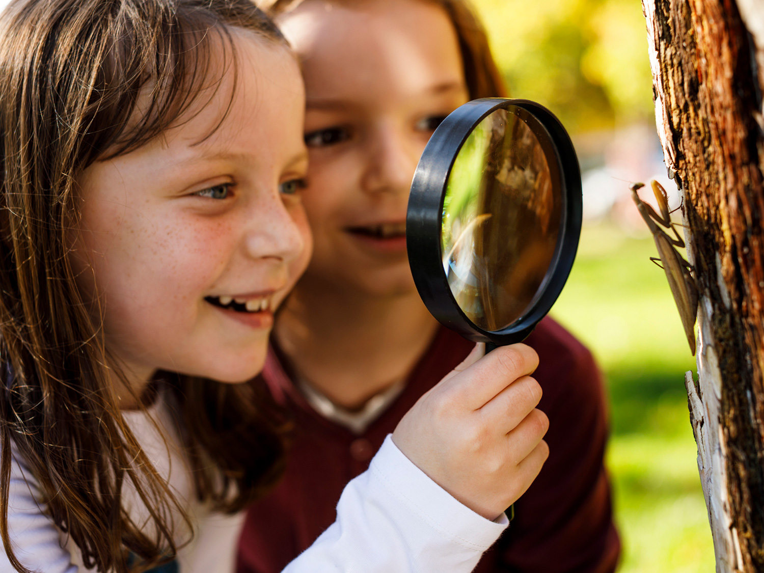 8 Ways To Maximize Fun And Learning At An Academic Summer Camp
