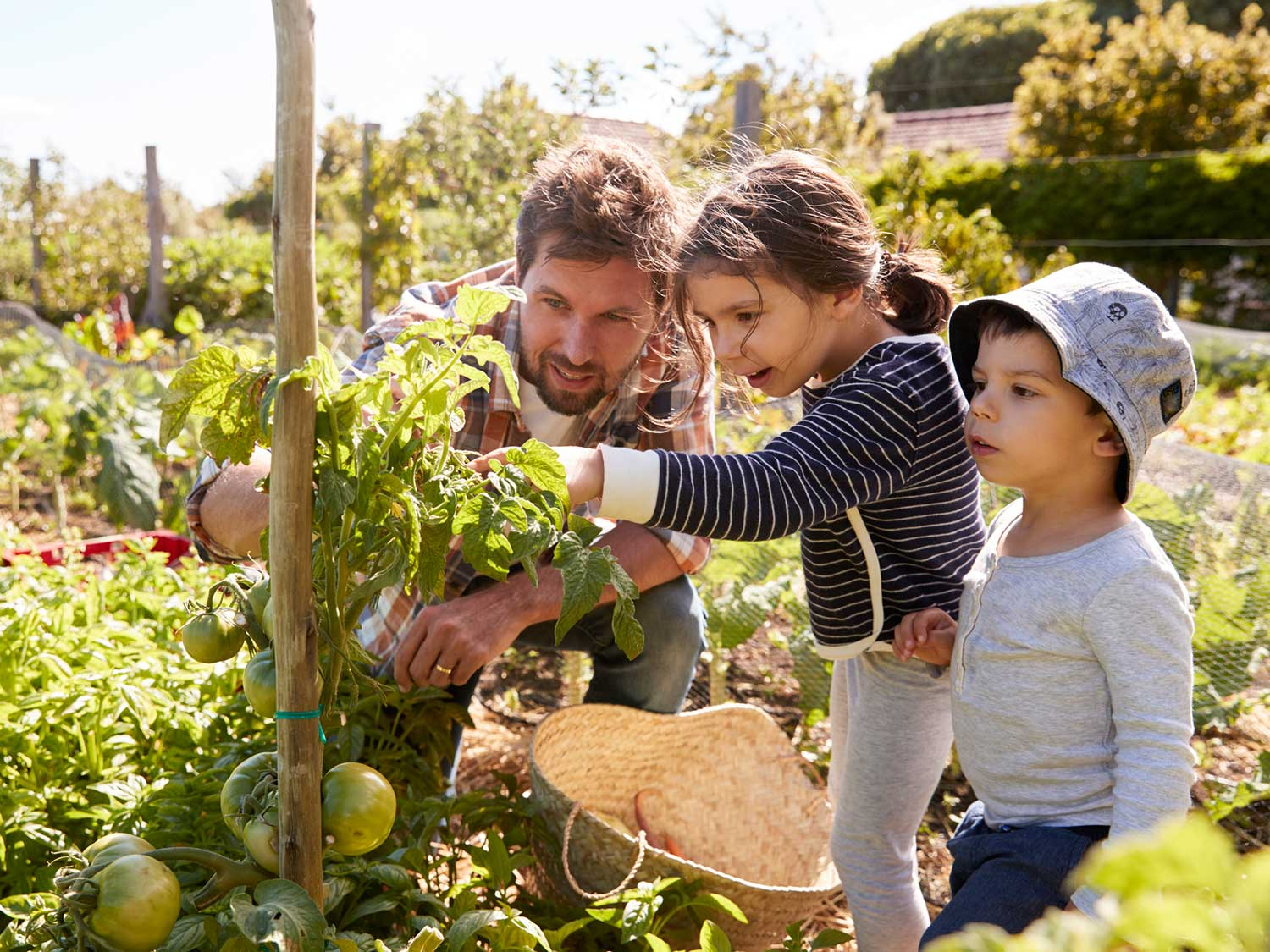 How Gardening Teaches Kids To Grow