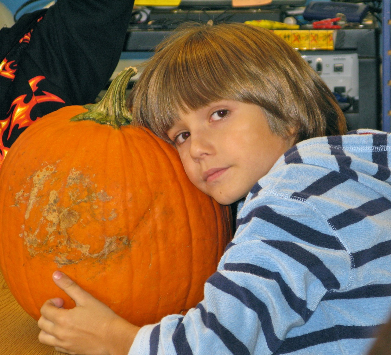 The Pumpkin Project Math Science And Fun