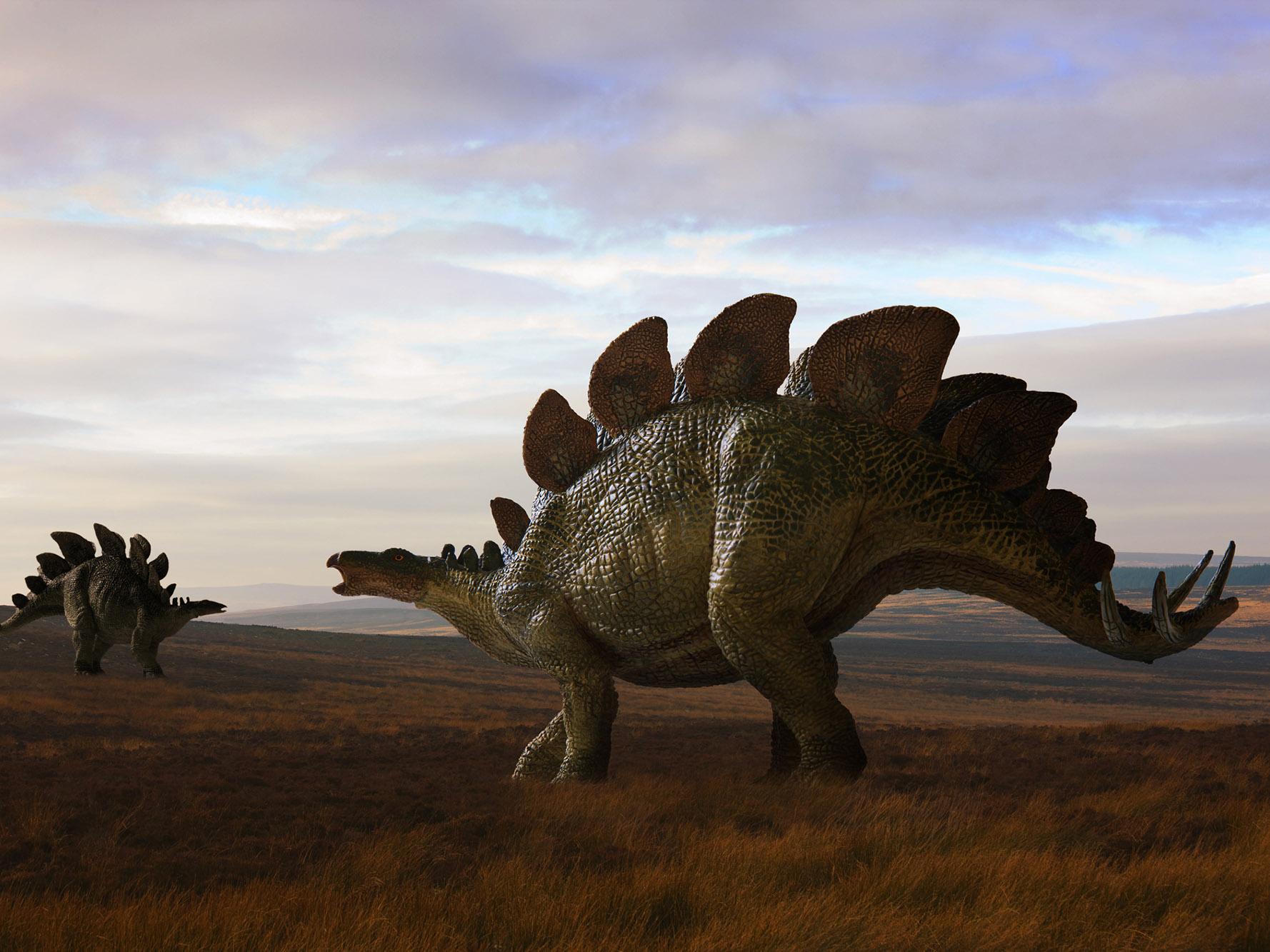 Dinosaurs Teaching Ideas T Dinosaur Activities
