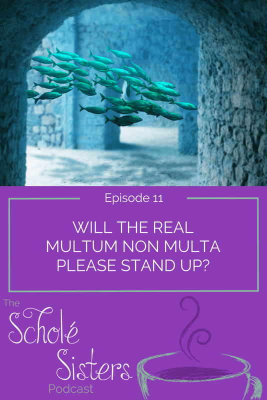 "Both applied and misapplied to education, Mystie and Brandy tackle the Latin motto ""multum non multa"" which means ""much, not many."""