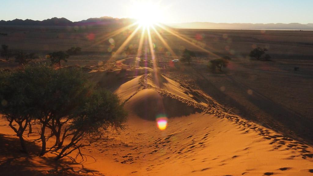 Foto: Sonnenaufgang bei den Elim Dunes Sesriem Namibia