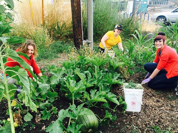 Volunteer Spotlight: GloryBee Foods