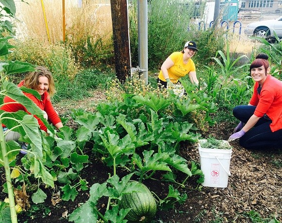 Volunteer Spotlight: GloryBee Foods