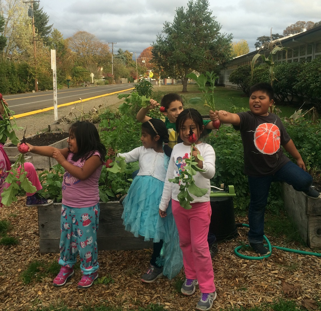 From the Ground Up: Garden Love Month in a Brave New Year