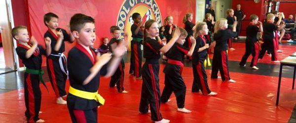 Martial Arts Grading.