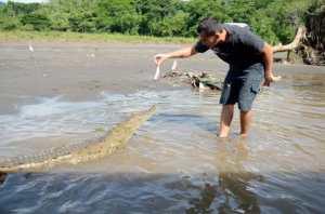 costa rica croc tour