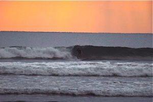 costa rica surfing class