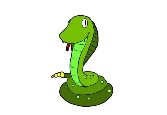 Afbeeldingsresultaat voor slang