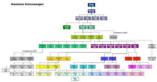 stamboom Schoonewagen grafisch