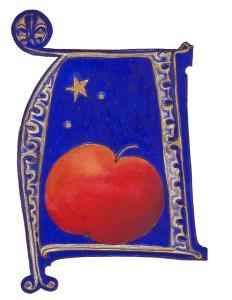 Initial für den Advent Zeichnung Petra Elsner