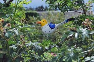 Vogel in der Brombeerlaube Foto: Lutz Reinhardt