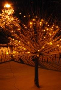 ... und endlich Schnee dazu. Foto: pe