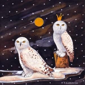 Schneeeulen von Petra Elsber